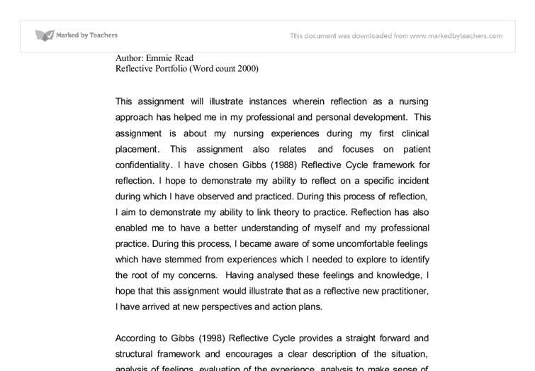 nursing portfolio essay sample