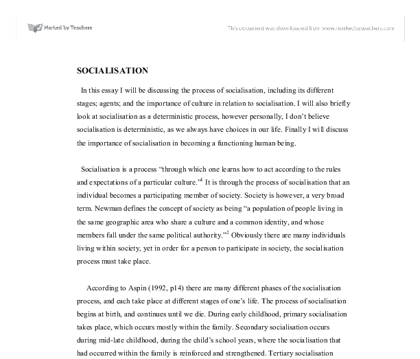 Essay on process of socialisation